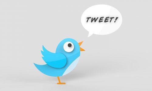 SNSマーケティングの主要ツールTwitter!
